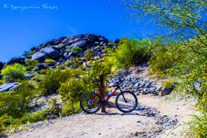 South Mountain Biking